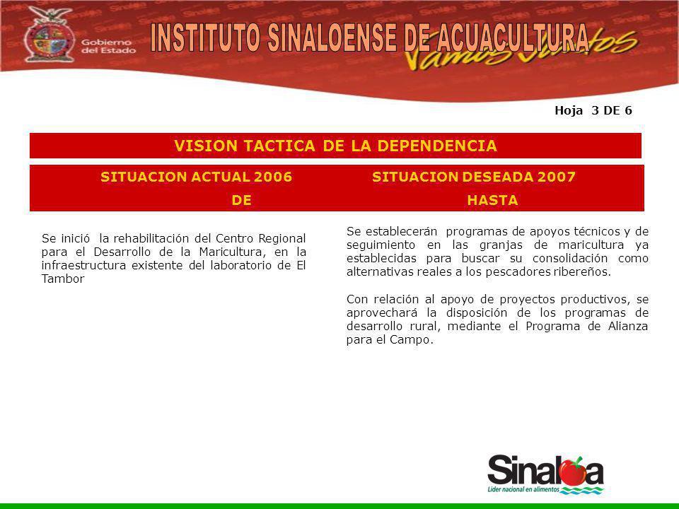 Sistema Integral de Planeación, Programación y Presupuestación del Gasto Público Proceso para el Ejercicio Fiscal del año 2005 Se establecerán program
