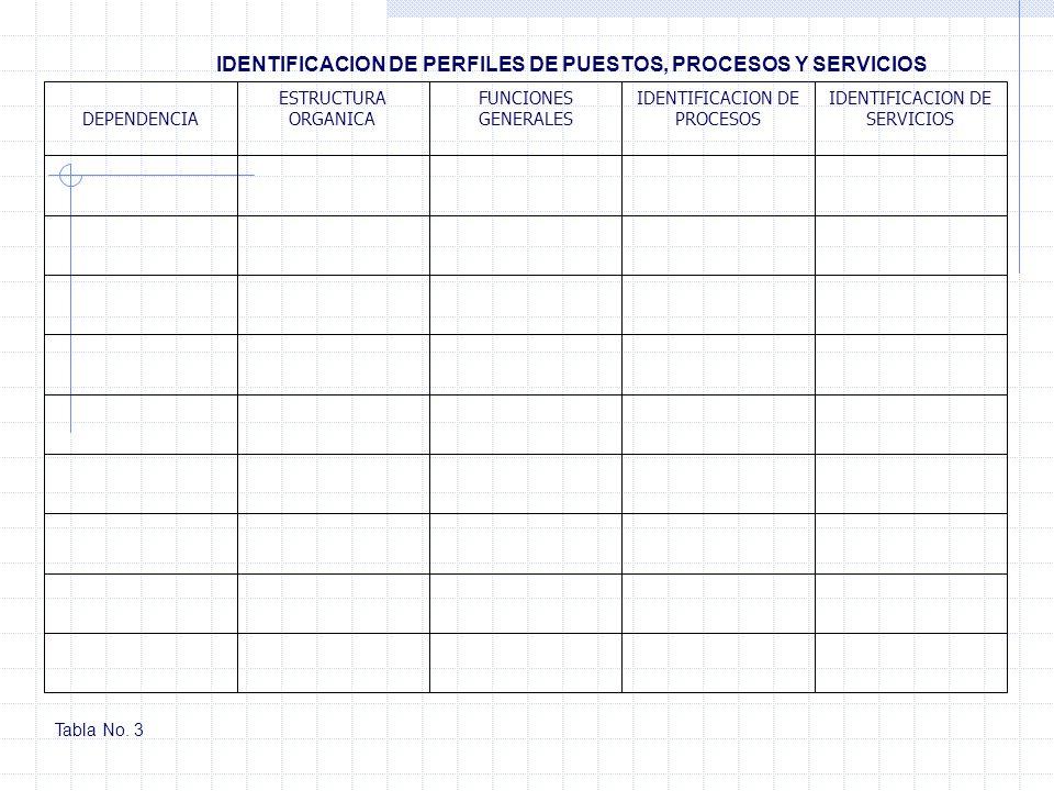 IDENTIFICACION DE PERFILES DE PUESTOS, PROCESOS Y SERVICIOS IDENTIFICACION DE SERVICIOS IDENTIFICACION DE PROCESOS FUNCIONES GENERALES ESTRUCTURA ORGA