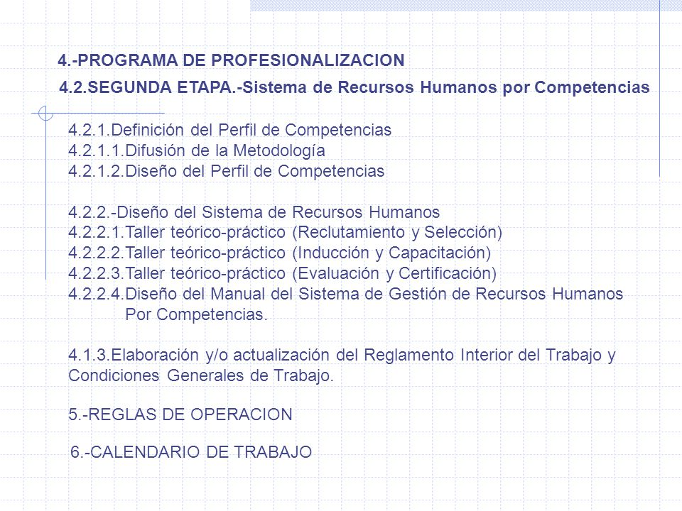 4.-PROGRAMA DE PROFESIONALIZACION 4.2.SEGUNDA ETAPA.-Sistema de Recursos Humanos por Competencias 4.2.1.Definición del Perfil de Competencias 4.2.1.1.