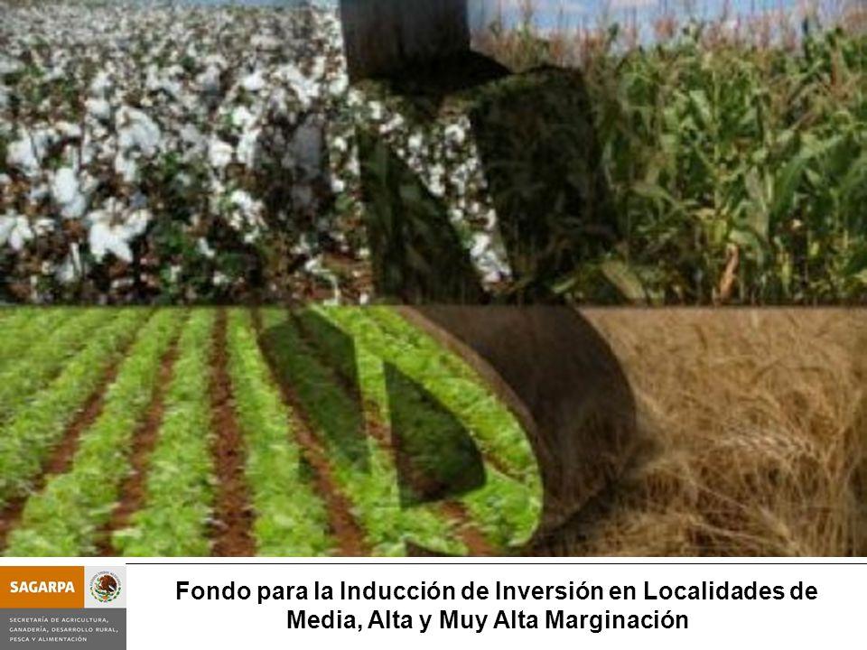 Programa de Prevención y Manejo de Riesgos Subcomponente Fondo para la Inducción de Inversión en Localidades M - A- AM Fondo para la Inducción de Inversión en Localidades de Media, Alta y Muy Alta Marginación