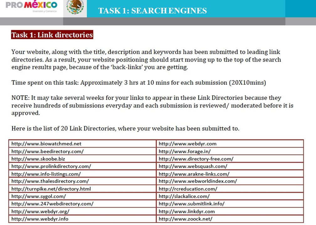 TASK 1: SEARCH ENGINES