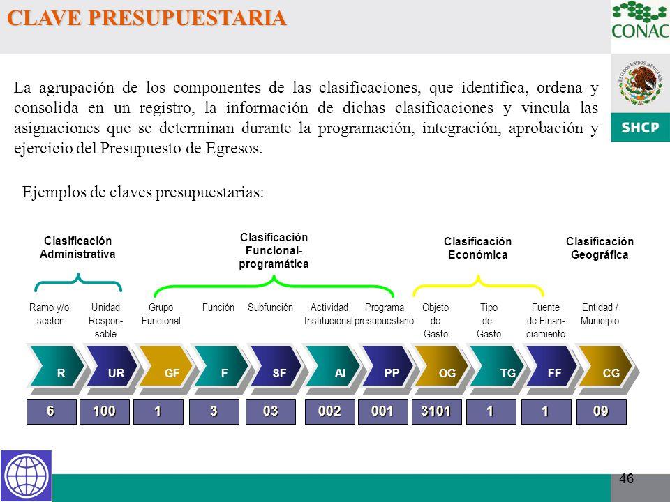 46 La agrupación de los componentes de las clasificaciones, que identifica, ordena y consolida en un registro, la información de dichas clasificacione