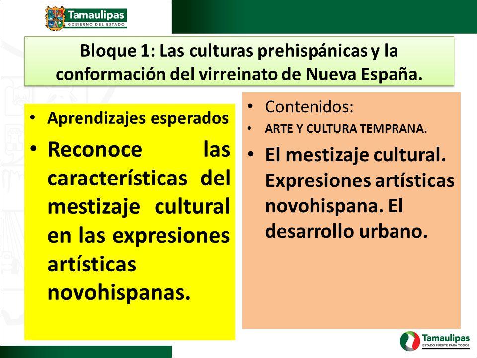 Bloque 1: Las culturas prehispánicas y la conformación del virreinato de Nueva España. Aprendizajes esperados Reconoce las características del mestiza