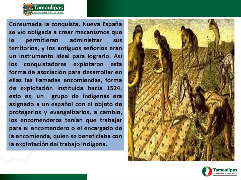 Consumada la conquista, Nueva España se vio obligada a crear mecanismos que le permitieran administrar sus territorios, y los antiguos señoríos eran u