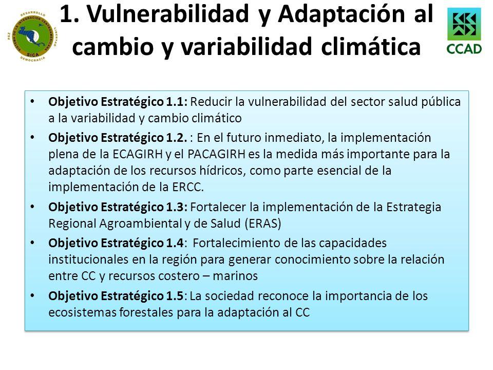 1. Vulnerabilidad y Adaptación al cambio y variabilidad climática Objetivo Estratégico 1.1: Reducir la vulnerabilidad del sector salud pública a la va