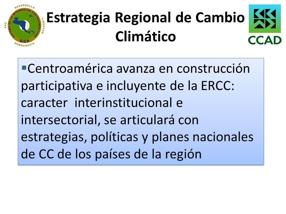 Estrategia Regional de Cambio Climático Centroamérica avanza en construcción participativa e incluyente de la ERCC: caracter interinstitucional e inte