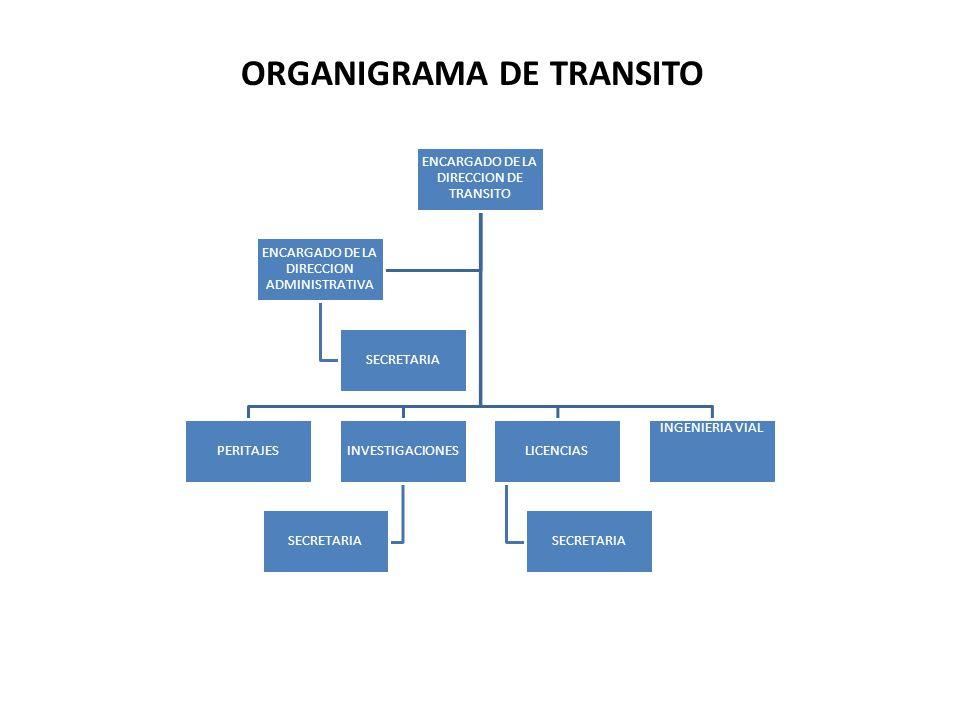ENCARGADO DE LA DIRECCION DE TRANSITO PERITAJESINVESTIGACIONES SECRETARIA LICENCIAS SECRETARIA INGENIERIA VIAL ENCARGADO DE LA DIRECCION ADMINISTRATIVA SECRETARIA ORGANIGRAMA DE TRANSITO
