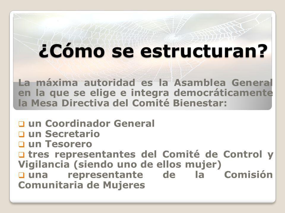 ¿Cómo se estructuran? La máxima autoridad es la Asamblea General en la que se elige e integra democráticamente la Mesa Directiva del Comité Bienestar: