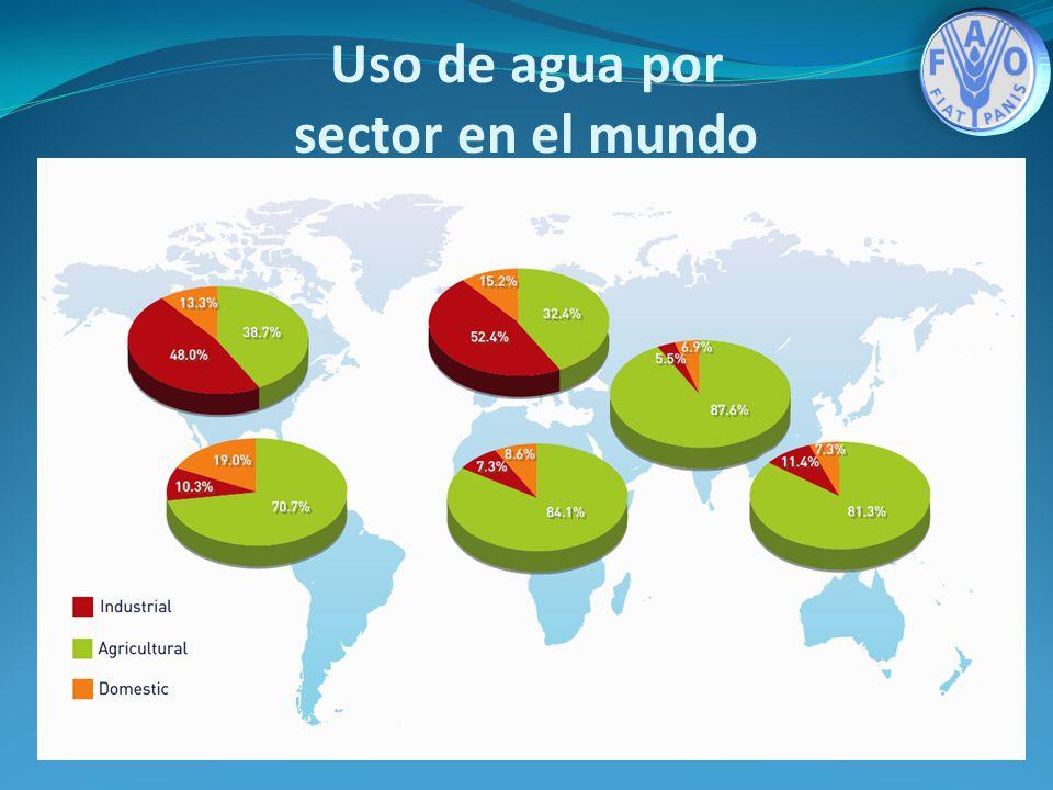 Agricultura 70 % Industria 20 % Ciudades Agua potable 10 % Uso de agua por sector en el mundo