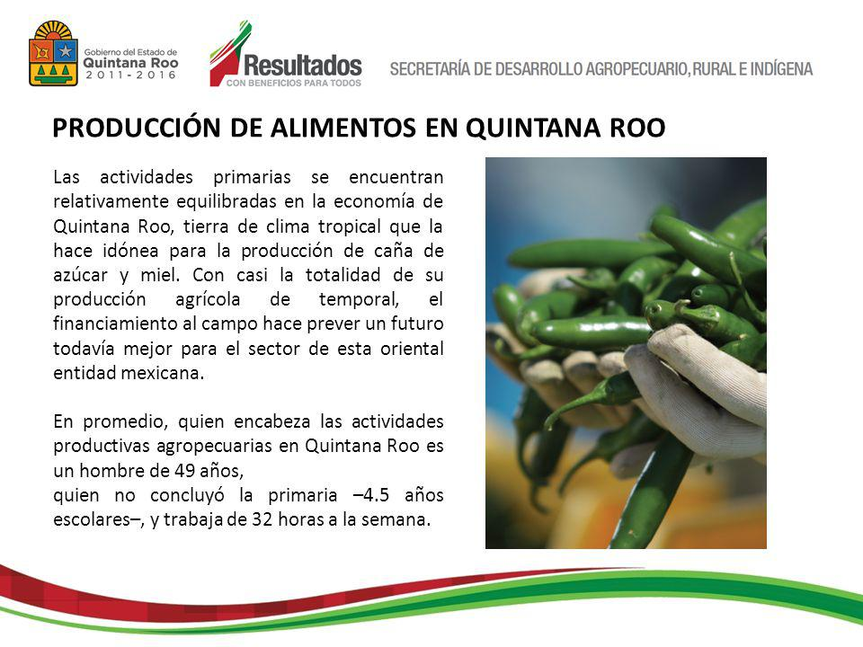 Aunque su vocación es primordialmente turística, en Quintana Roo, el volumen de la producción del sector primario de Quintana Roo es de un millón 201 mil 382 toneladas de productos; con esta cantidad participa con 0.5% del total nacional.