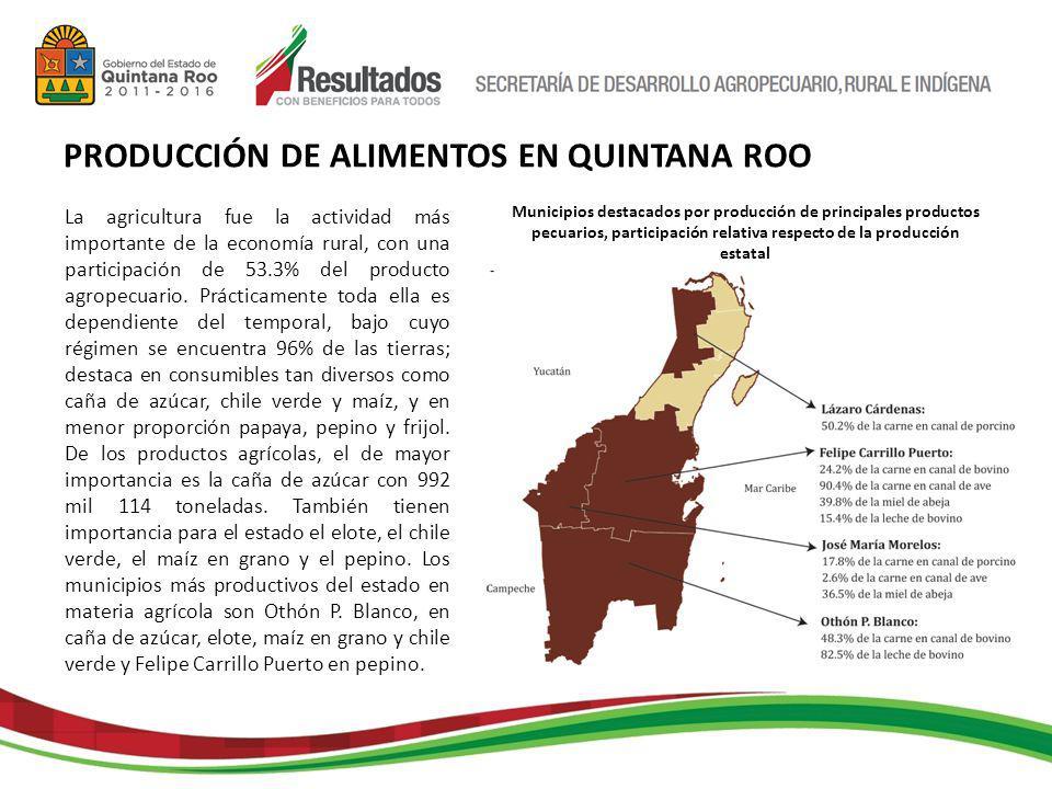 La agricultura fue la actividad más importante de la economía rural, con una participación de 53.3% del producto agropecuario.