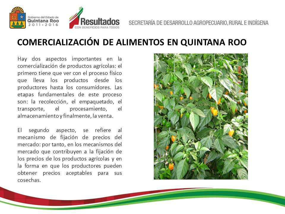 Hay dos aspectos importantes en la comercialización de productos agrícolas: el primero tiene que ver con el proceso físico que lleva los productos desde los productores hasta los consumidores.