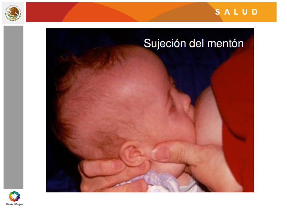 La boca debe abrirse buscando el pezón y el bebé debe comenzar a mamar.