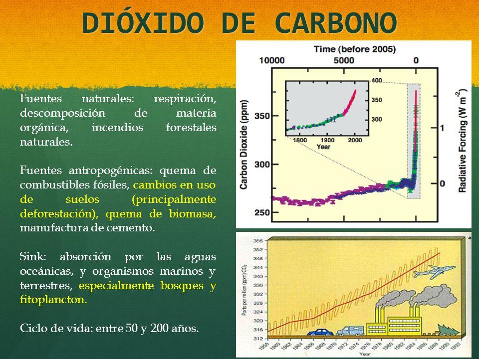 DIÓXIDO DE CARBONO Fuentes naturales: respiración, descomposición de materia orgánica, incendios forestales naturales. Fuentes antropogénicas: quema d