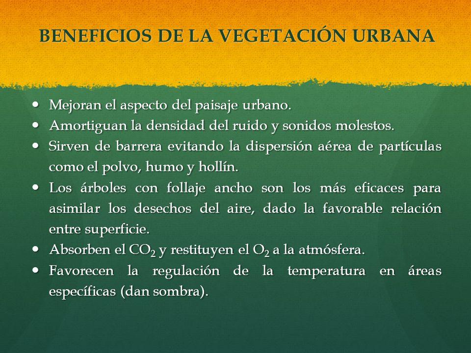 BENEFICIOS DE LA VEGETACIÓN URBANA Mejoran el aspecto del paisaje urbano. Mejoran el aspecto del paisaje urbano. Amortiguan la densidad del ruido y so