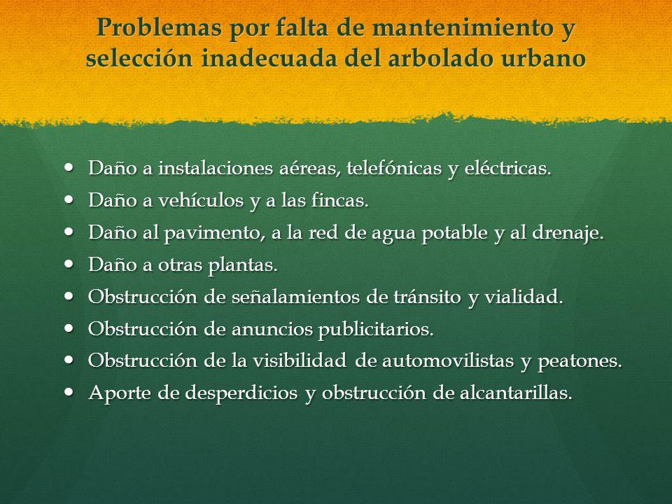 Problemas por falta de mantenimiento y selección inadecuada del arbolado urbano Daño a instalaciones aéreas, telefónicas y eléctricas. Daño a instalac