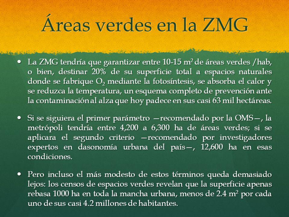 Áreas verdes en la ZMG La ZMG tendría que garantizar entre 10-15 m 2 de áreas verdes /hab, o bien, destinar 20% de su superficie total a espacios natu