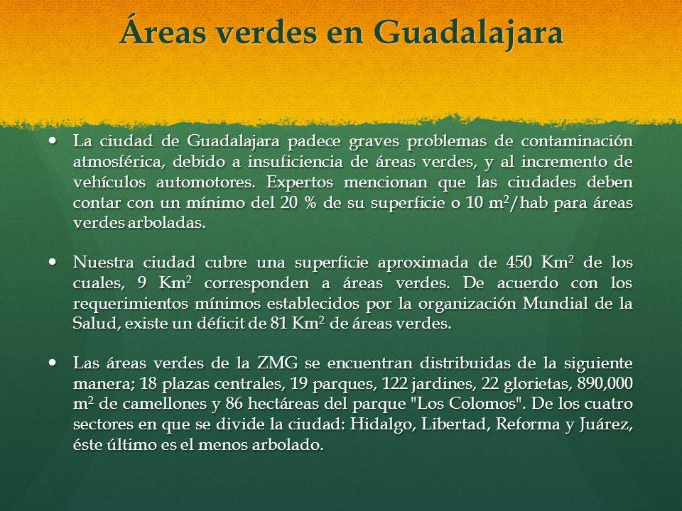 Áreas verdes en Guadalajara Áreas verdes en Guadalajara La ciudad de Guadalajara padece graves problemas de contaminación atmosférica, debido a insufi