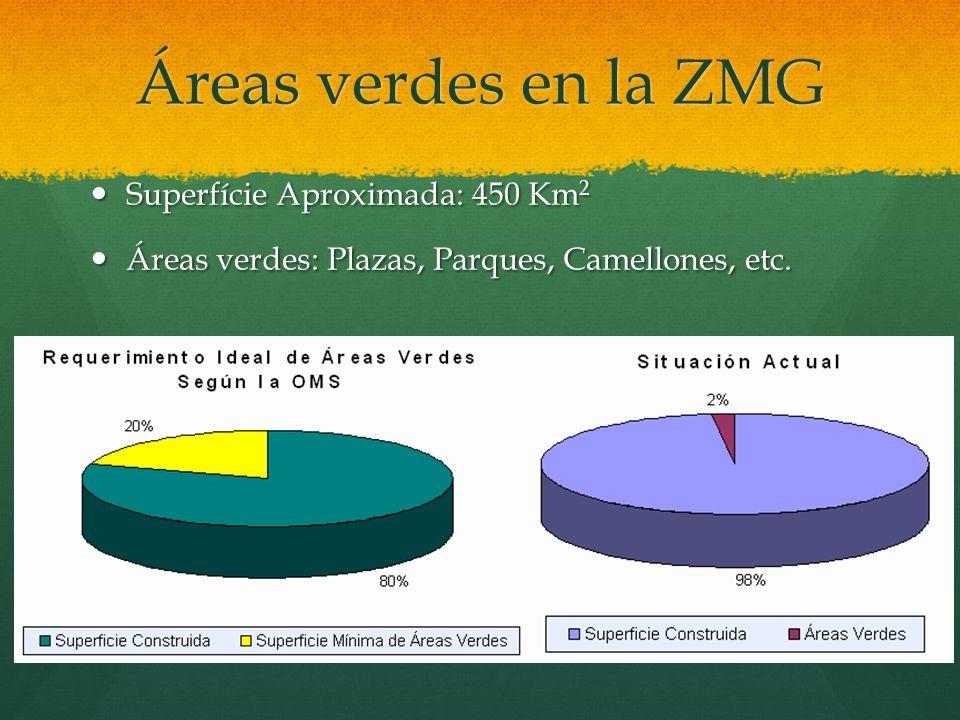 Áreas verdes en la ZMG Superfície Aproximada: 450 Km 2 Superfície Aproximada: 450 Km 2 Áreas verdes: Plazas, Parques, Camellones, etc. Áreas verdes: P