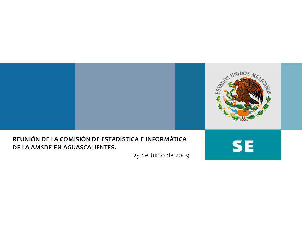 REUNIÓN DE LA COMISIÓN DE ESTADÍSTICA E INFORMÁTICA DE LA AMSDE EN AGUASCALIENTES. 25 de Junio de 2009