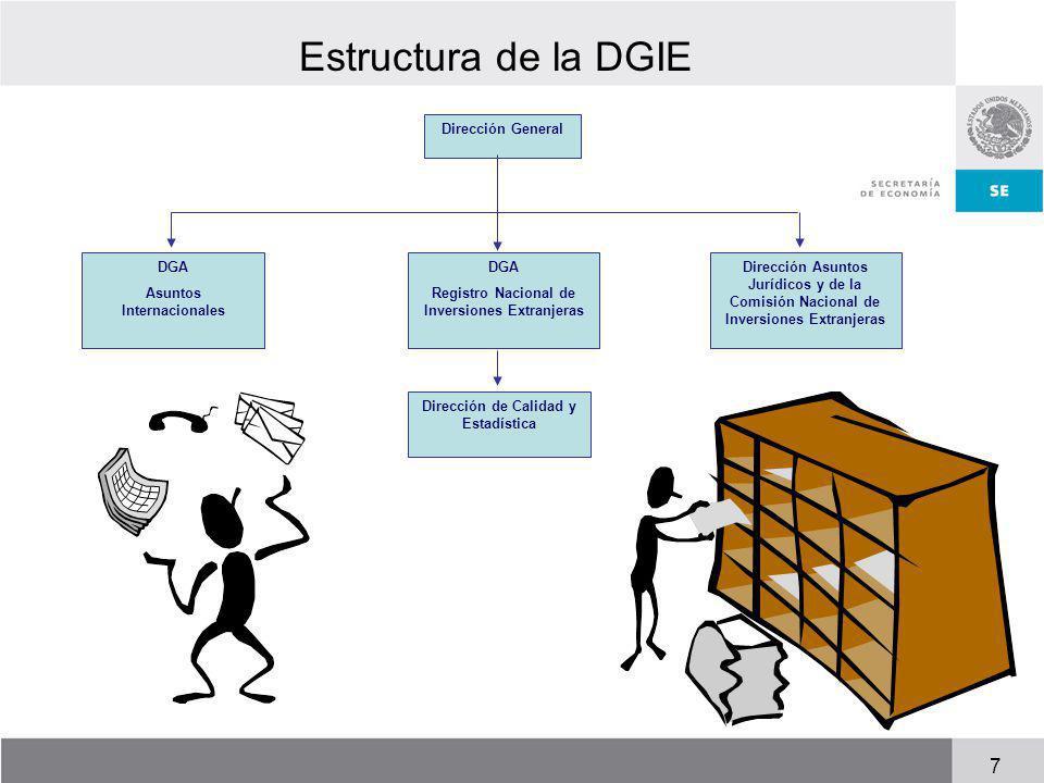 Estructura de la DGIE Dirección General DGA Asuntos Internacionales DGA Registro Nacional de Inversiones Extranjeras Dirección Asuntos Jurídicos y de