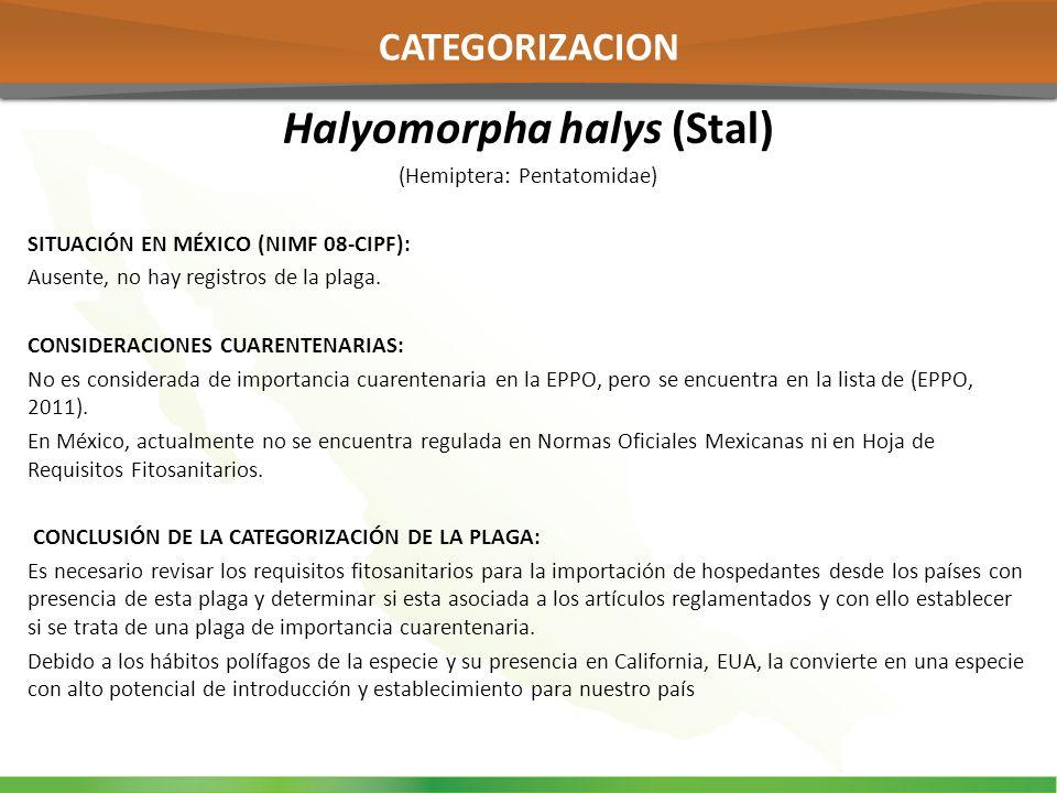 Halyomorpha halys (Stal) (Hemiptera: Pentatomidae) SITUACIÓN EN MÉXICO (NIMF 08-CIPF): Ausente, no hay registros de la plaga. CONSIDERACIONES CUARENTE
