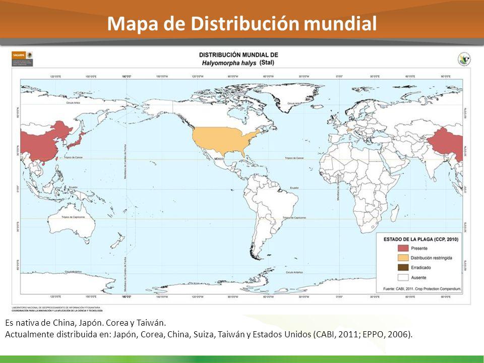 Mapa de Distribución mundial Es nativa de China, Japón. Corea y Taiwán. Actualmente distribuida en: Japón, Corea, China, Suiza, Taiwán y Estados Unido
