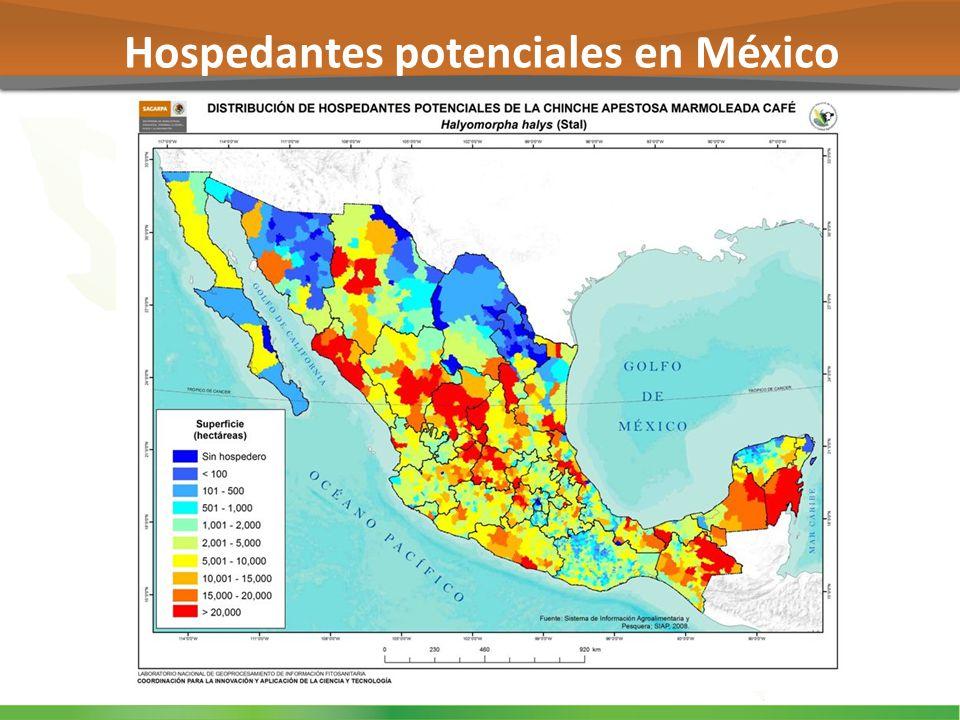 Hospedantes potenciales en México