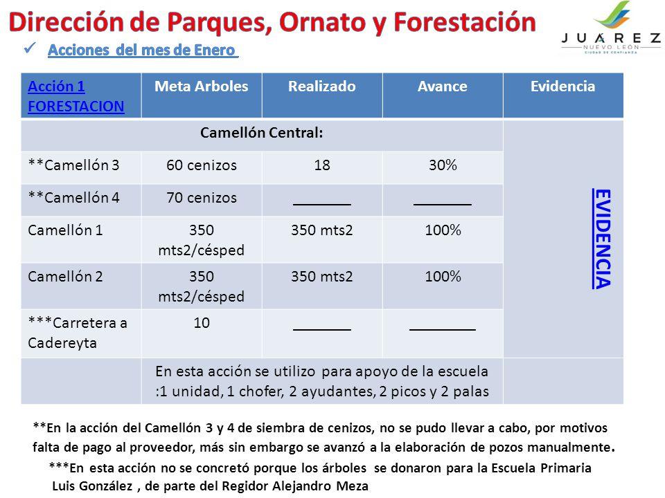 Acción 1 FORESTACION Meta ArbolesRealizadoAvanceEvidencia Camellón Central: EVIDENCIA **Camellón 360 cenizos1830% **Camellón 470 cenizos_______ Camellón 1350 mts2/césped 350 mts2100% Camellón 2350 mts2/césped 350 mts2100% ***Carretera a Cadereyta 10_______________ En esta acción se utilizo para apoyo de la escuela :1 unidad, 1 chofer, 2 ayudantes, 2 picos y 2 palas **En la acción del Camellón 3 y 4 de siembra de cenizos, no se pudo llevar a cabo, por motivos falta de pago al proveedor, más sin embargo se avanzó a la elaboración de pozos manualmente.