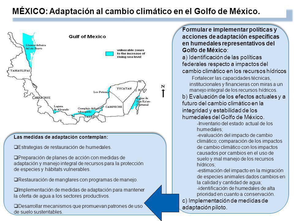 MÉXICO: Adaptación al cambio climático en el Golfo de México. Formular e implementar políticas y acciones de adaptación específicas en humedales repre