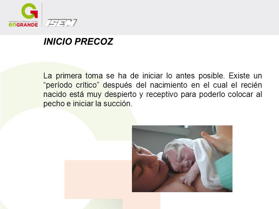 INICIO PRECOZ La primera toma se ha de iniciar lo antes posible. Existe un período crítico después del nacimiento en el cual el recién nacido está muy