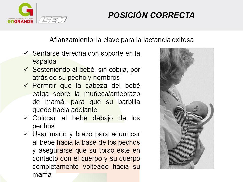 POSICIÓN CORRECTA Afianzamiento: la clave para la lactancia exitosa Sentarse derecha con soporte en la espalda Sosteniendo al bebé, sin cobija, por at