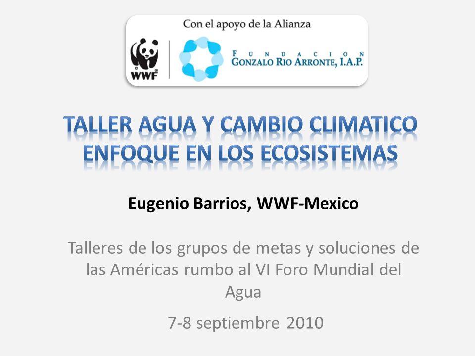 Eugenio Barrios, WWF-Mexico Talleres de los grupos de metas y soluciones de las Américas rumbo al VI Foro Mundial del Agua 7-8 septiembre 2010