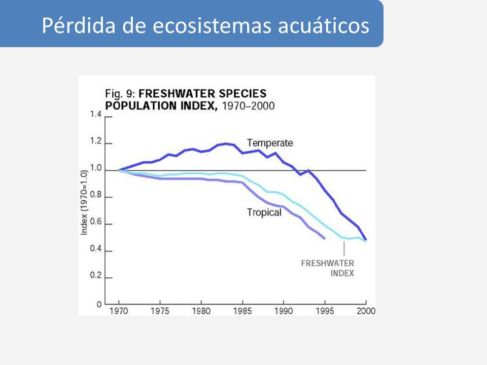 Pérdida de ecosistemas acuáticos