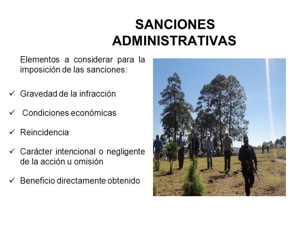 SANCIONES ADMINISTRATIVAS Elementos a considerar para la imposición de las sanciones: Gravedad de la infracción Condiciones económicas Reincidencia Ca