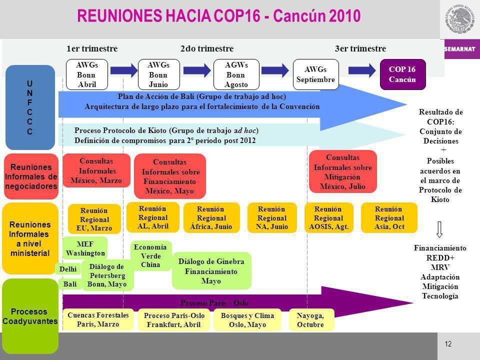 Proceso Paris - Oslo Resultado de COP16: Conjunto de Decisiones + Financiamiento REDD+ MRV Adaptación Mitigación Tecnología 1er trimestre2do trimestre