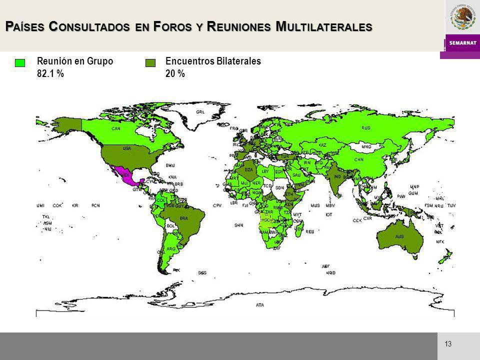 P AÍSES C ONSULTADOS EN F OROS Y R EUNIONES M ULTILATERALES Reunión en Grupo 82.1 % Encuentros Bilaterales 20 % 13