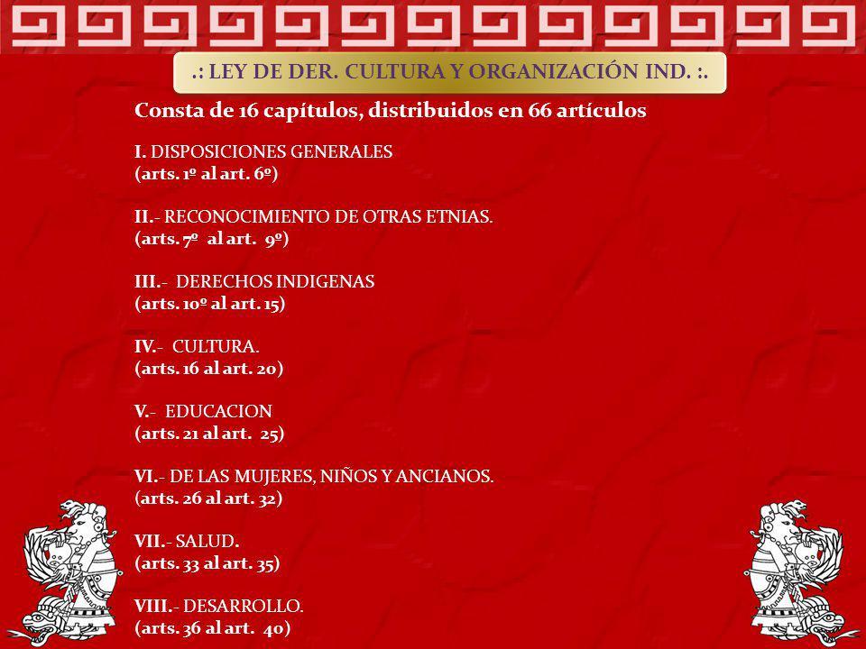Consta de 16 capítulos, distribuidos en 66 artículos I. DISPOSICIONES GENERALES (arts. 1º al art. 6º) II.- RECONOCIMIENTO DE OTRAS ETNIAS. (arts. 7º a