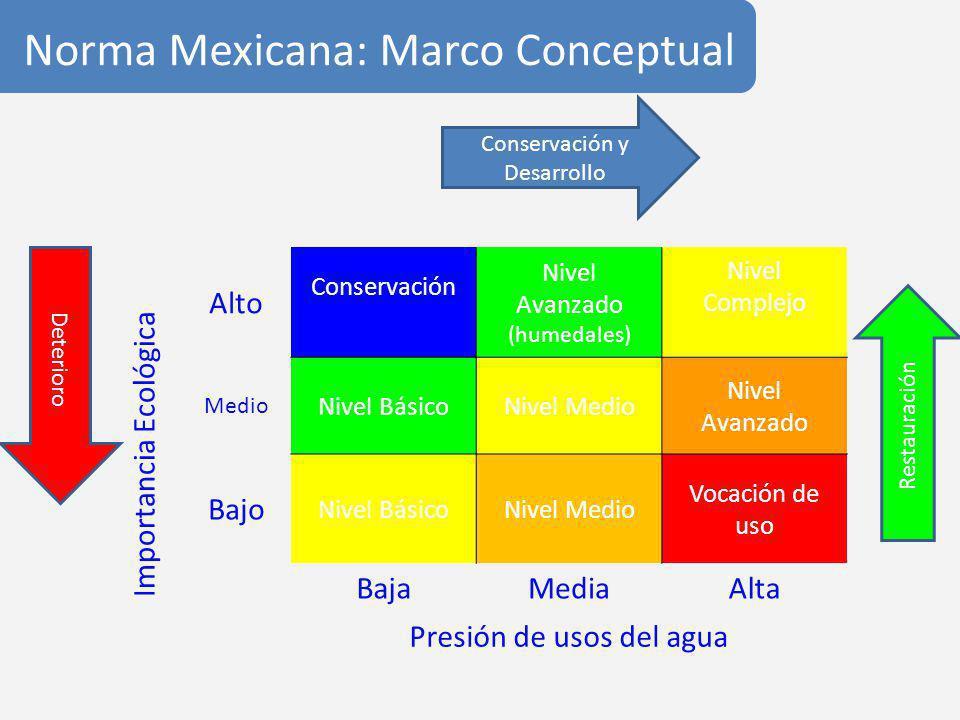 Norma Mexicana: Marco Conceptual Importancia Ecológica Alto Conservación Nivel Avanzado (humedales) Nivel Complejo Medio Nivel BásicoNivel Medio Nivel Avanzado Bajo Nivel BásicoNivel Medio Vocación de uso BajaMediaAlta Presión de usos del agua Conservación y Desarrollo Restauración Deterioro