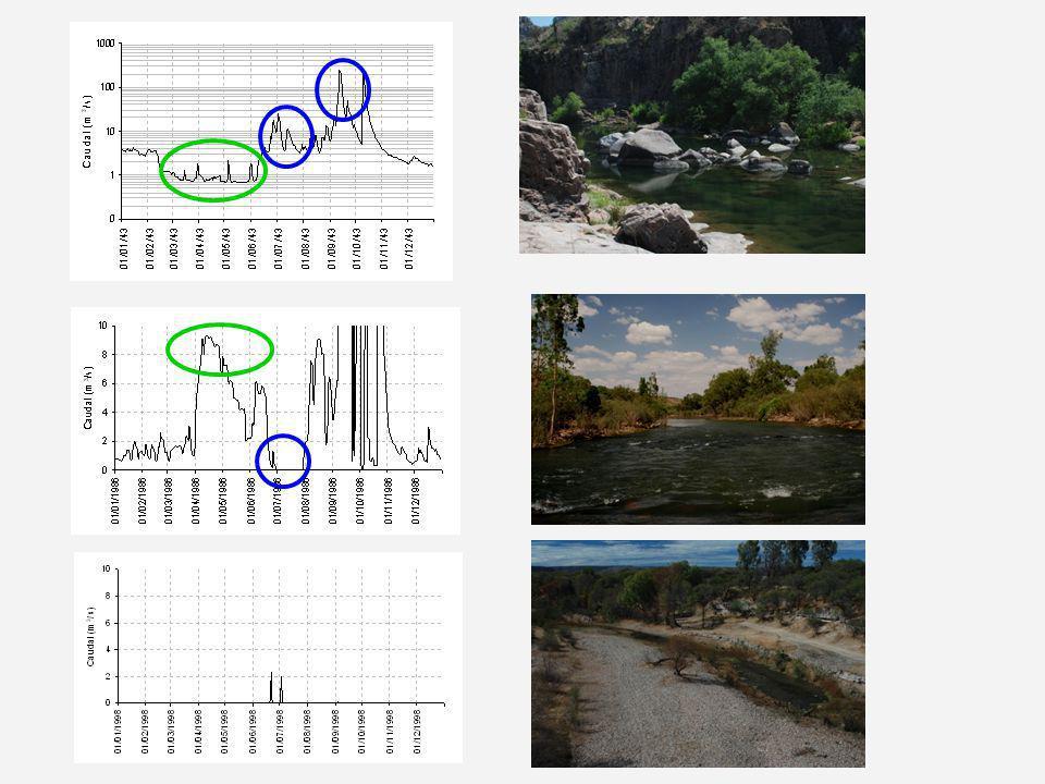 Experiencias de Caudal Ecológico Tres cuencas (2005-2009) Más de 100 participantes (20 talleres) Evaluación detallada de 33 sitios (3 cuencas) – 24 cumplen con el CE – 7 sitios requieren manejar extracciones – 2 sitios requieren reasignación de agua