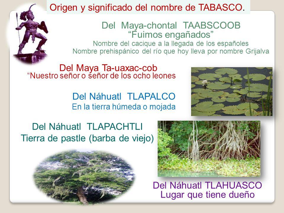 Del Maya-chontal TAABSCOOB Fuimos engañados Nombre del cacique a la llegada de los españoles Nombre prehispánico del río que hoy lleva por nombre Grij