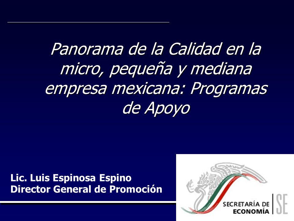 Panorama de la Calidad en la micro, pequeña y mediana empresa mexicana: Programas de Apoyo Lic. Luis Espinosa Espino Director General de Promoción