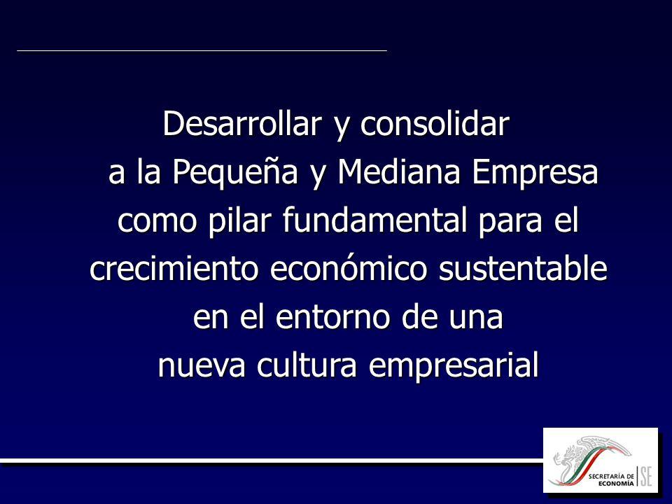 Desarrollar y consolidar a la Pequeña y Mediana Empresa como pilar fundamental para el crecimiento económico sustentable en el entorno de una nueva cu