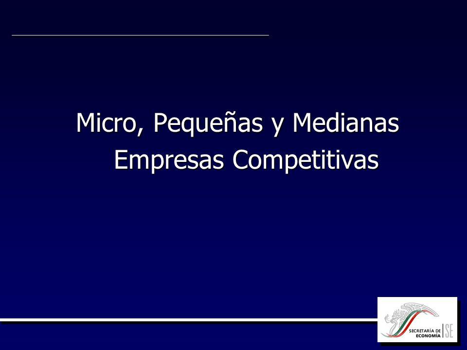 Micro, Pequeñas y Medianas Empresas Competitivas