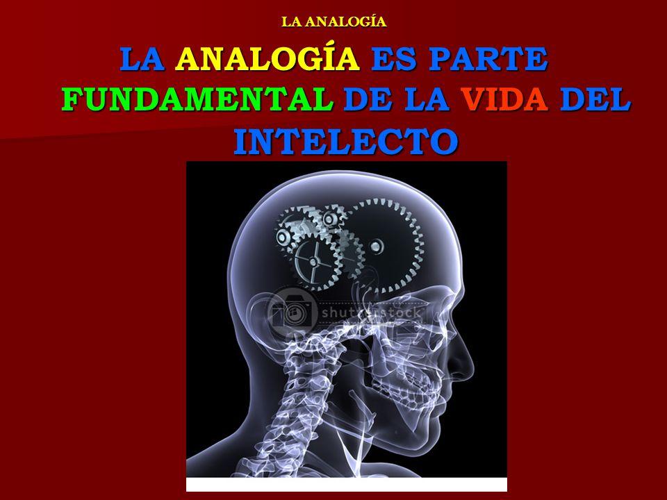 LA ANALOGÍA ELEMENTOS HISTÓRICOS LA ANALOGÍA ELEMENTOS HISTÓRICOS PARA HACER PARA HACER DE LA DE LA ANALOGÍA ANALOGÍA UN UN INSTRUMENTO INSTRUMENTO LÓGICO LÓGICO DE DE INDAGACIÓN INDAGACIÓN