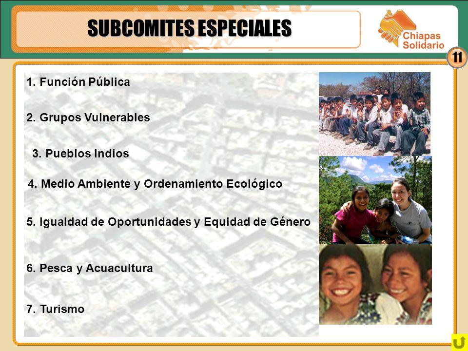11 SUBCOMITES ESPECIALES 3. Pueblos Indios 1. Función Pública 2. Grupos Vulnerables 4. Medio Ambiente y Ordenamiento Ecológico 5. Igualdad de Oportuni