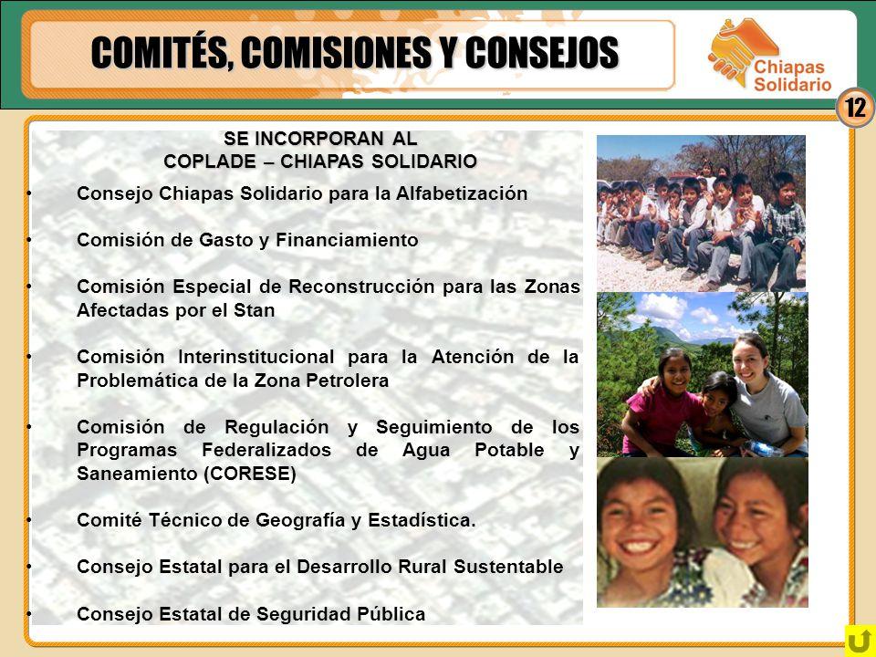 12 COMITÉS, COMISIONES Y CONSEJOS Consejo Chiapas Solidario para la Alfabetización Comisión de Gasto y Financiamiento Comisión Especial de Reconstrucc