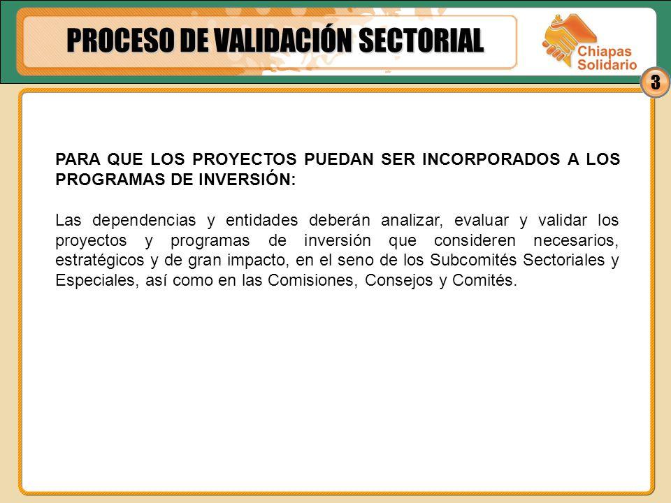14 6.Lograr que niñas, niños, jóvenes y adultos mayores indígenas de Chiapas, ejerzan plenamente sus derechos económicos, sociales, culturales, ambientales, civiles y políticos, ampliando los programas gubernamentales.