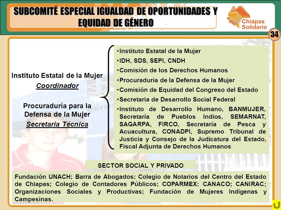 34 SUBCOMITÉ ESPECIAL IGUALDAD DE OPORTUNIDADES Y EQUIDAD DE GÉNERO Instituto Estatal de la Mujer Coordinador Procuraduría para la Defensa de la Mujer