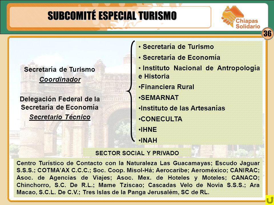 36 SUBCOMITÉ ESPECIAL TURISMO Secretaría de Turismo Coordinador Delegación Federal de la Secretaría de Economía Secretario Técnico Secretaría de Turis